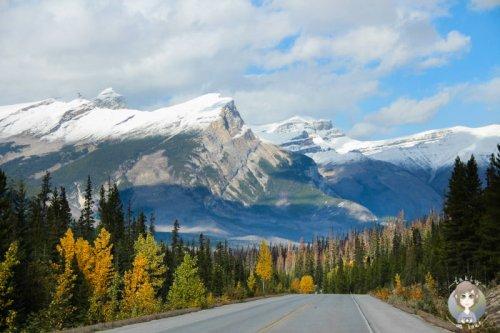 Kanada in drei Wochen: Route & Tipps für Kanada-Anfänger