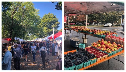 Logan Square's Boulevards Hosting Live Music, Bigger Farmers Market, Circus Classes And More Sunday