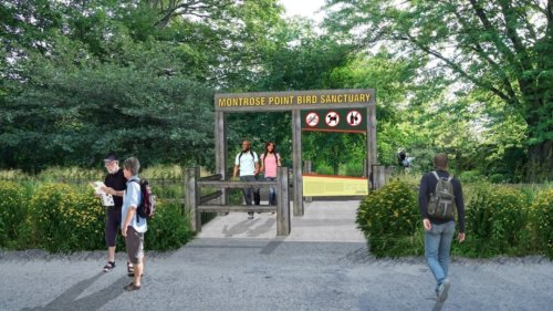 Montrose Bird Sanctuary Getting Paved Path This Summer To Improve Accessibility