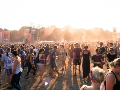 Don't Buy, Sell Fake Vaccine Cards For Lollapalooza — Or You Could Face Prison Time, FBI Warns