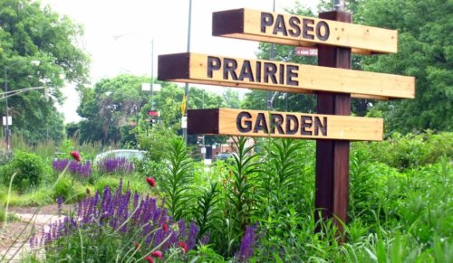 Paseo Prairie Garden Mother's Day Plant Sale Canceled Again — And Organizers Need Volunteers To Keep The Garden Blooming