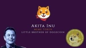 Akita Inu: The Decentralized Meme Currency Building a DEX Community With Polarfox