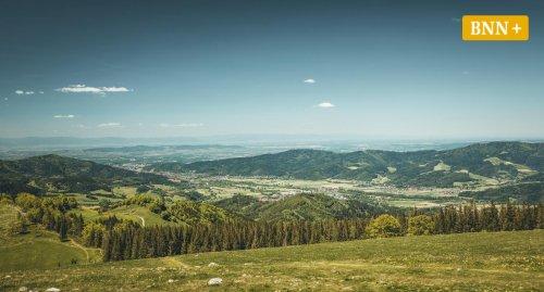 Wanderung durch den Schwarzwald: Von Hinterzarten nach Himmelreich