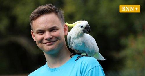 Karlsruher Kakadu Tini: Laut wie ein Düsenjet und mit eigenem Instagram-Profil