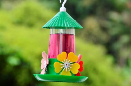 7 Important Things to Know About Your Hummingbird Feeder