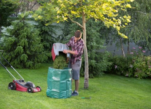 Solved! The Great Debate on What to Do with Grass Clippings
