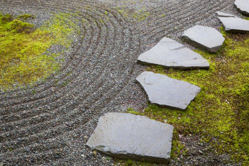 10 Stepping Stone Designs to Elevate Your Garden Pathway