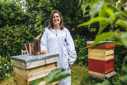 It's Swarm Season for Honeybees: How You Can Help Keep These Important Pollinators Safe