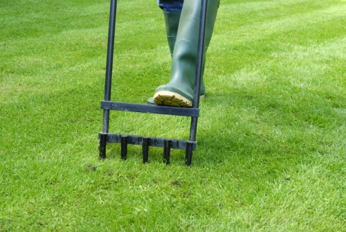 Solved! Here's Exactly When You Should Aerate the Lawn