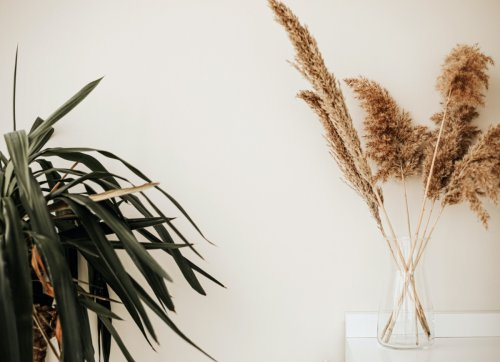 10 Eye-Popping Ways to Decorate with Pampas Grass at Home
