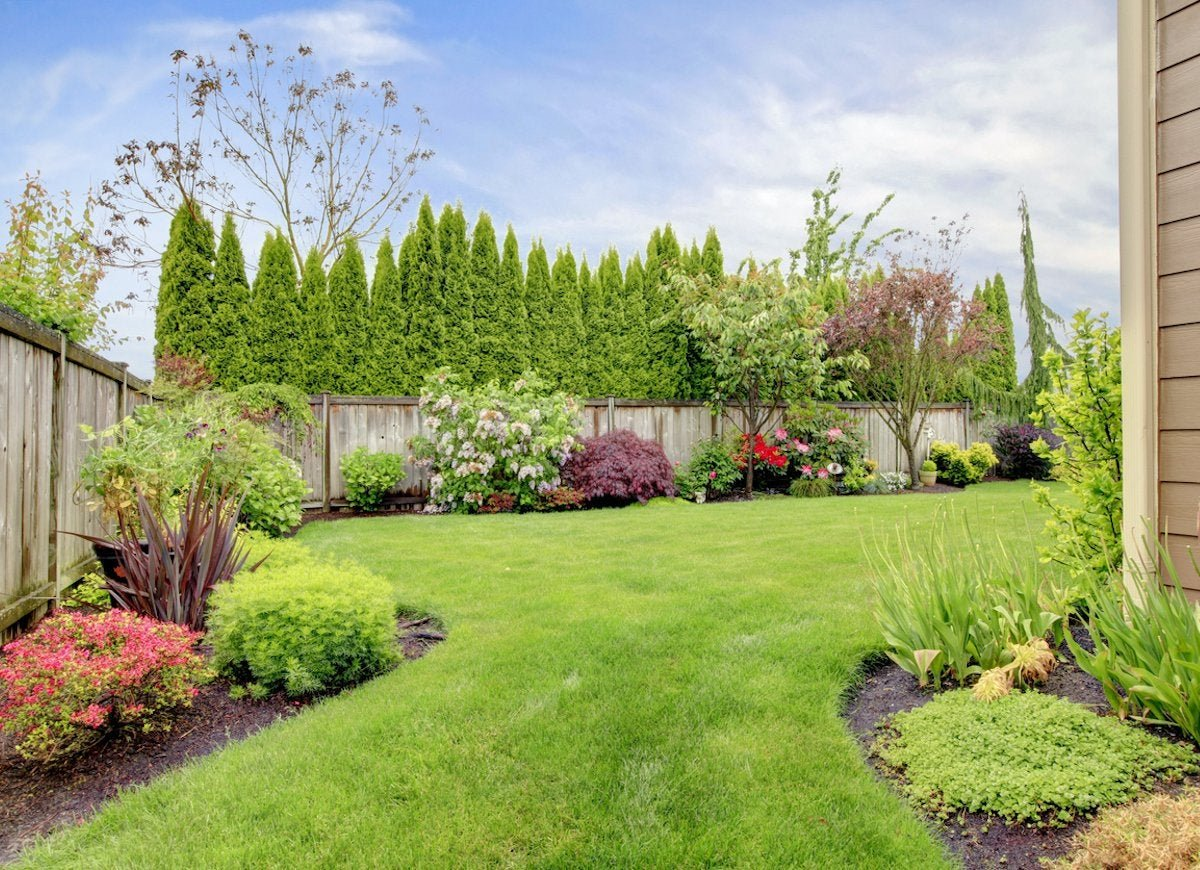 The Best Things You Can Do for Your Lawn