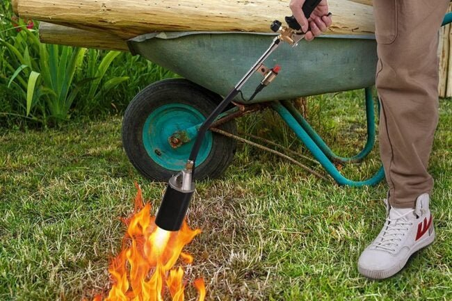 The Best Weed Torches for Wiping Out Invasive Plants