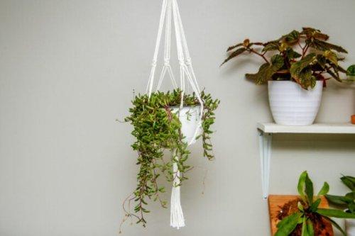 How To: Make a Simple Macramé Plant Hanger