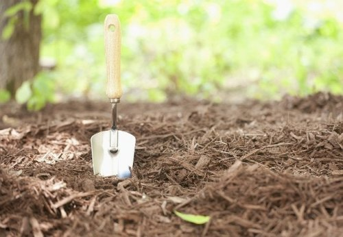 How To: Make Mulch from Scratch