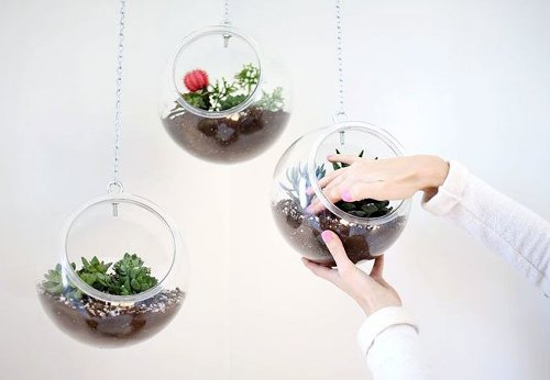 Weekend Projects: 5 Designs for a DIY Hanging Planter