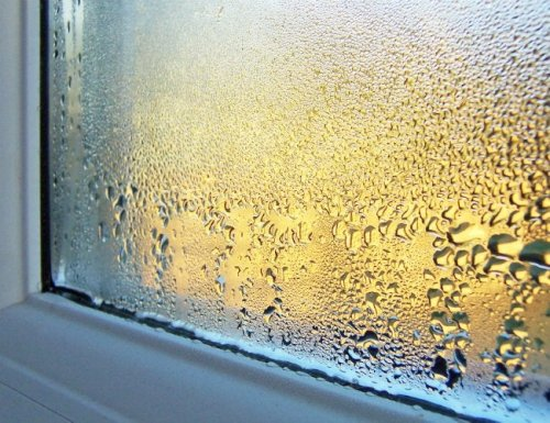 Solved! What to Do About Condensation on Windows