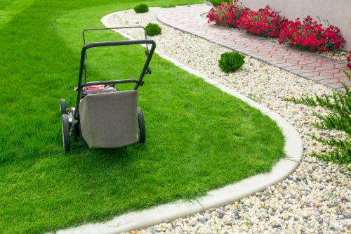 Solved! The Great Debate on Mowing Wet Grass