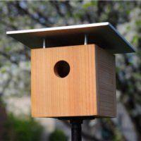 How To: Make a Birdhouse