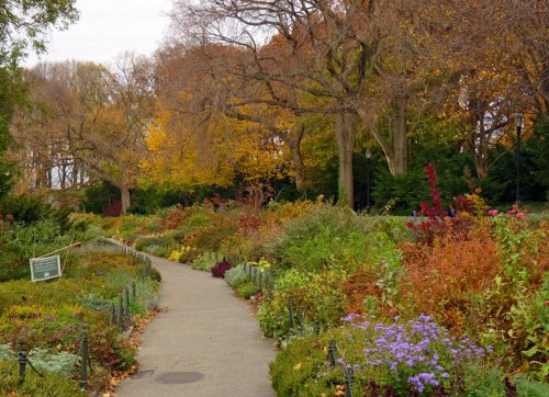 The Big Cities with the Best Parks Hiding in Them