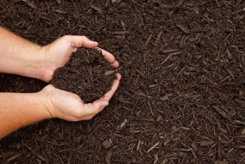 How To: Mulch Your Flower Beds