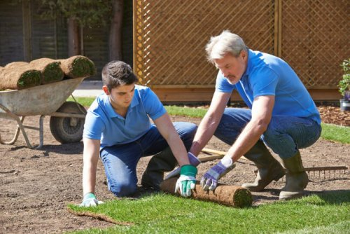 What Are Sod Prices?