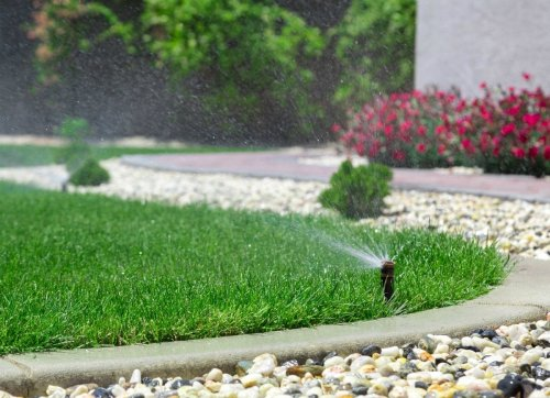 11 Ways You're Accidentally Ruining Your Lawn
