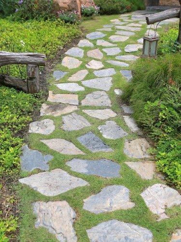 The Right Path: 15 Wonderful Walkway Designs