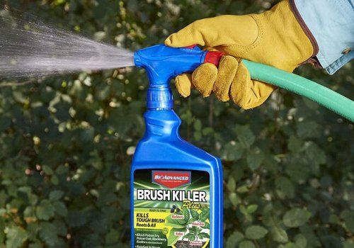 The Best Brush Killers for Your Lawn and Garden