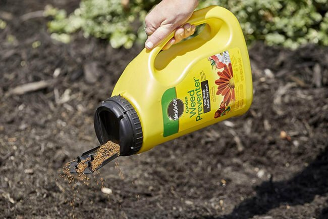 The Best Pre-Emergent Herbicides for Your Plants