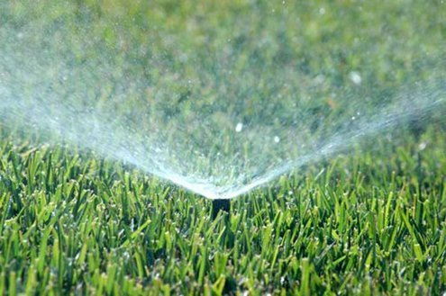 Top Tips for Watering Your Lawn