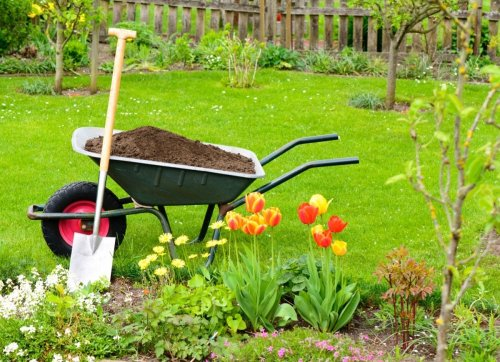 9 Mistakes You're Making That Are Damaging Your Soil