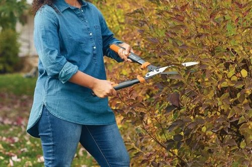 The Best Hedge Shears for Landscaping