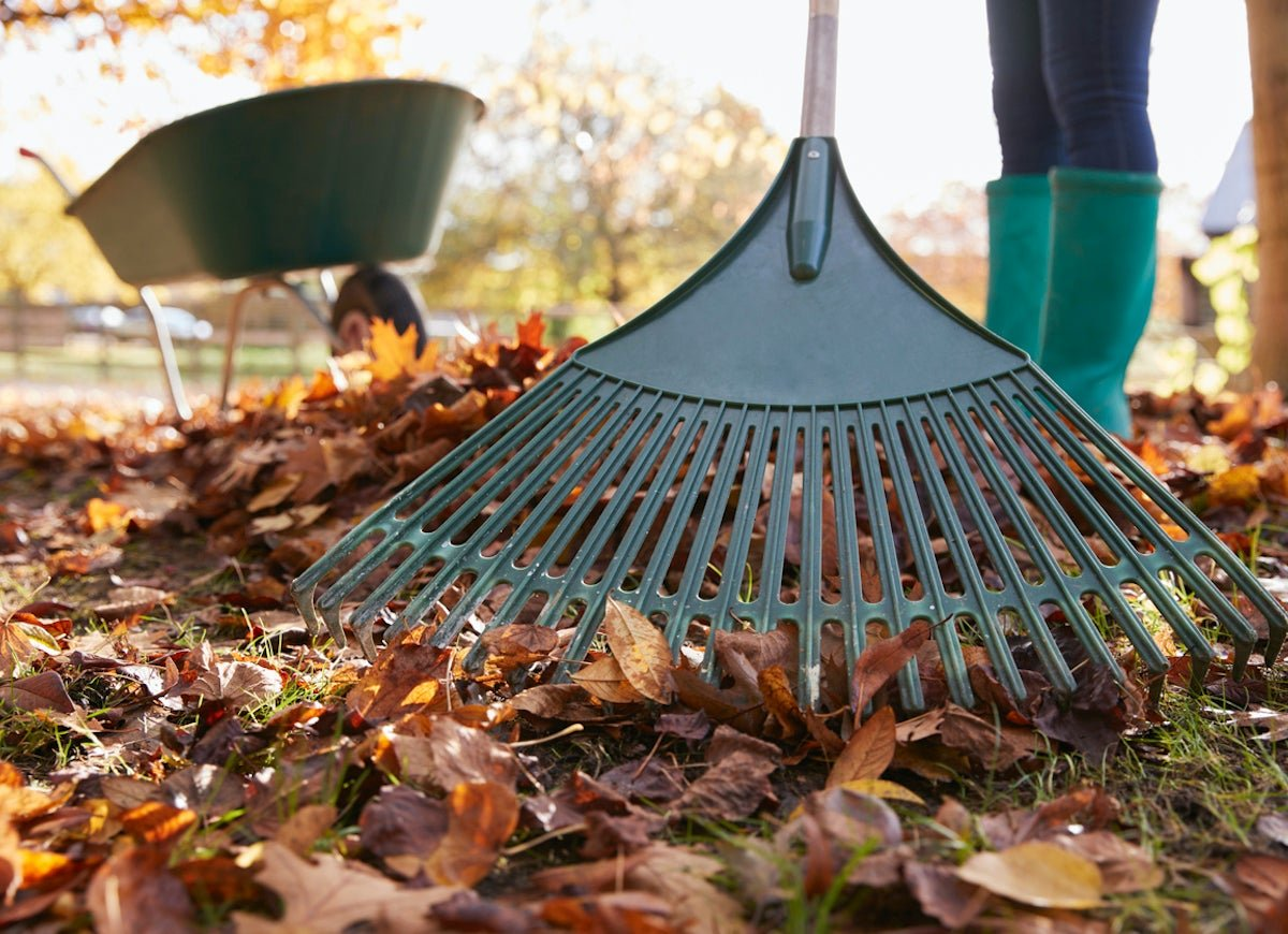 15 Hacks to Know If You Hate Fall Yard Work