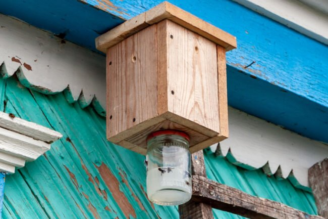 How To: Make a Carpenter Bee Trap