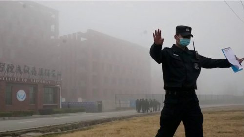 Wuhan lab report raises further questions about possible COVID-19 lab leak