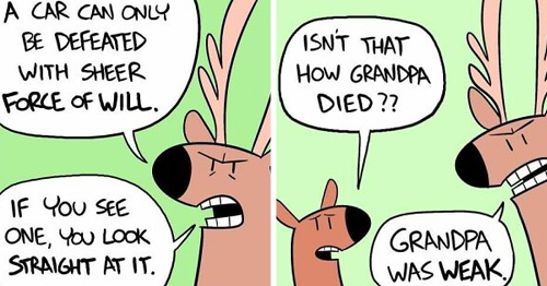 53 Comics With Wild Animals In Relatable Everyday Situations
