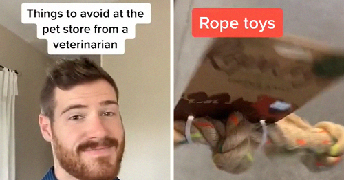 41 Useful Pet Care Tips From This Vet With 1.9M Followers