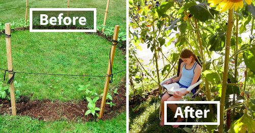 136 Creative Gardening Ideas To Try At Home