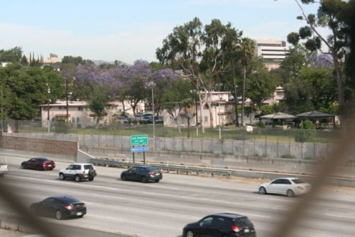 LA County communities with high car pollution also have high COVID-19 fatality rates, study notes