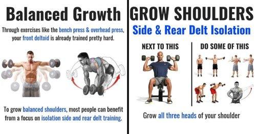10 BEST MUSCLE-BUILDING SHOULDER EXERCISES TO BUILD 3D SHOULDERS