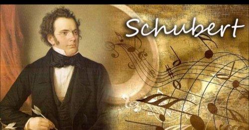 Marcha militar Nº1 Franz Schubert