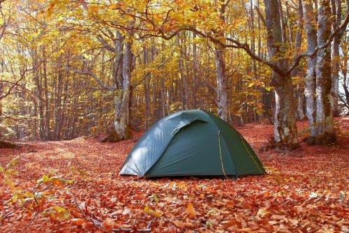 11 Most Beautiful Free Campsites in Australia