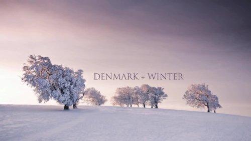 Denmark Love cover image