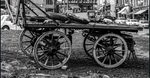 Woolshops Cart