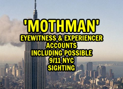 'Mothman' Eyewitness & Experiencer Accounts Including Possible 9/11 NYC Sighting