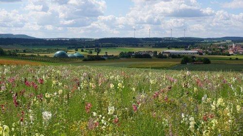Mit Blumen für die Biogas-Anlage gegen den Klimawandel