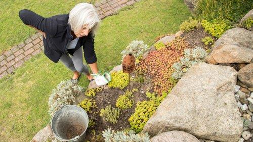 Garten-Arbeit im Herbst: So schonen Sie Ihren Rücken