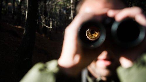 Vogelbeobachter löst größeren Polizeieinsatz aus