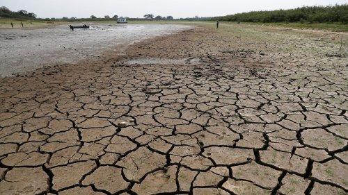 2020 gehört zu den drei wärmsten Jahren