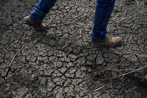 Dürre: Kalifornien bereitet sich auf die Klima-Katastrophe vor